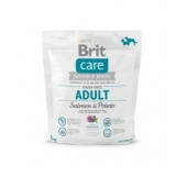 BRIT CARE Adult Salmon&Potato 1kg