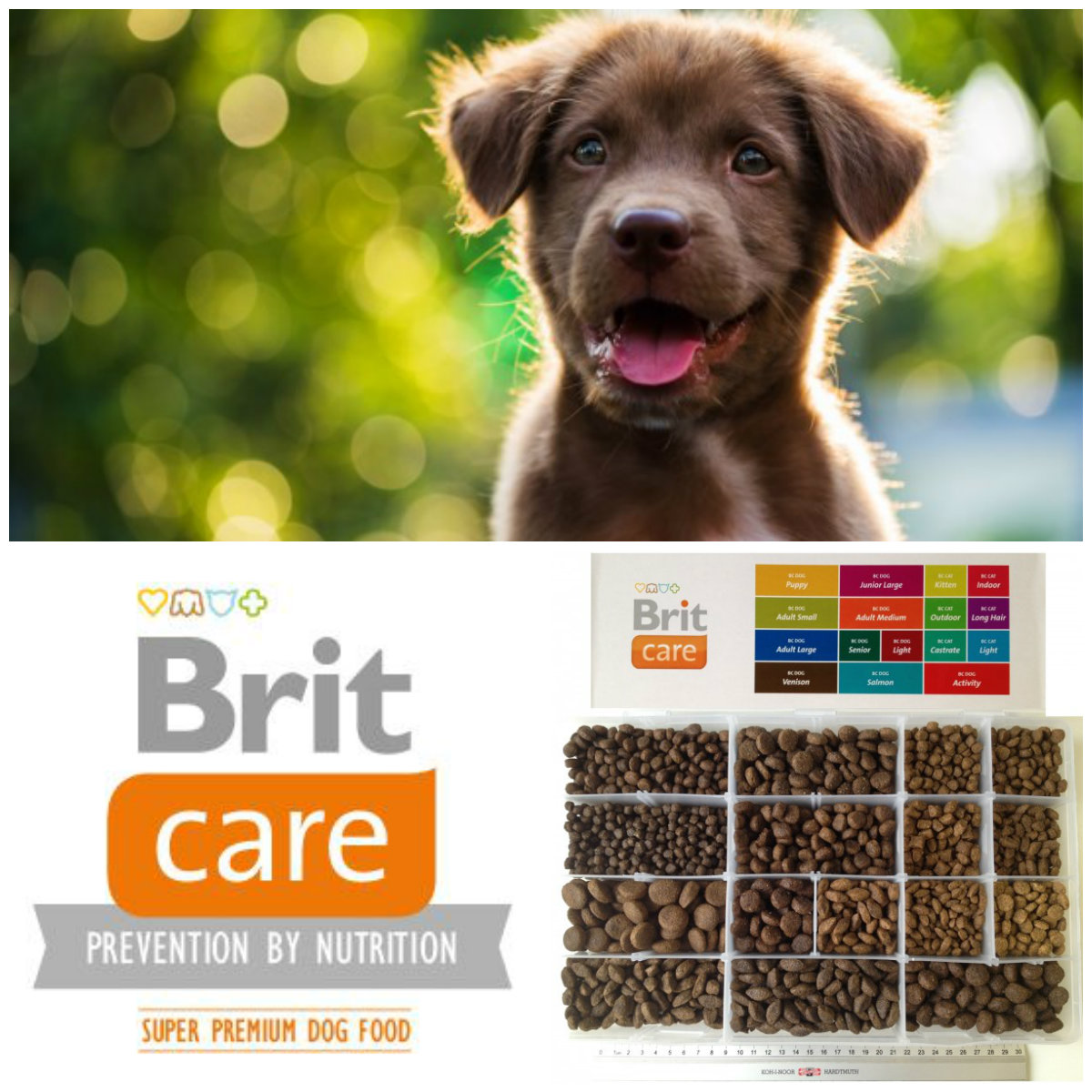 BRIT CARE Puppy All breed Lamb&Rice 1kg